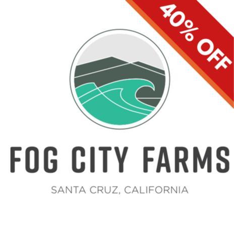 Fog City Farms Fun Dip Preroll