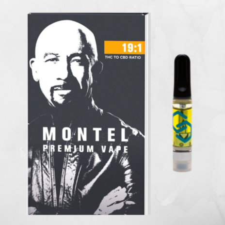 The Montel by Select 19:1