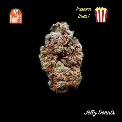 Jelly Donuts Popcorn Buds